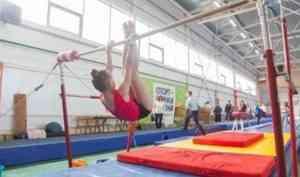 Определены лучшие гимнасты турнира «Беломорские надежды»