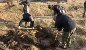 В Поморье раскрыто совершенное в 2008 году убийство жителя Рочегды