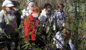 Ветераны САФУ и серебряные волонтеры осваивают премудрости садоводства