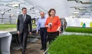 В Поморье планируют создать розничную сеть с продукцией местных аграриев