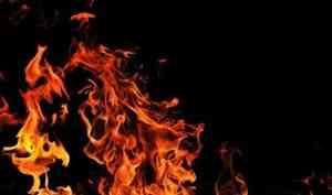 Житель Красноборского района устроил пожар, сжигая прошлогодний мусор