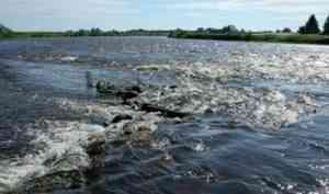 В Каргопольском районе местные жители обнаружили тело утонувшего мужчины