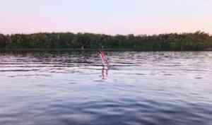 В Архангельске на Северной Двине затонул буксир