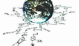 В САФУ пройдет IX международная конференция «Физикохимия растительных полимеров»