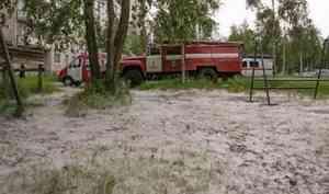 ВАрхангельской области происходят пожары из-за тополиного пуха