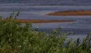 По факту гибели ребенка на воде в Вельском районе возбуждено уголовное дело