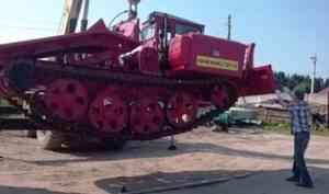 В Поморье продолжается реализация программы по восстановлению лесов