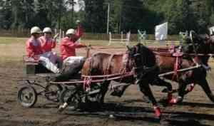 В Вельске состоялись шестые конноспортивные соревнования на приз губернатора Архангельской области «Гордость Поморья»