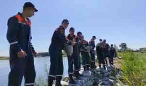 Прохождение паводка по реке Томь в Белогорске на контроле МЧС России