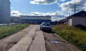 В Пинежском районе пьяный водитель насмерть сбил пешехода