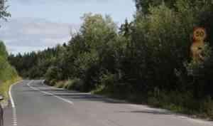 На «дачной» дороге под Новодвинском завершается установка остановочных комплексов
