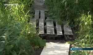 Жители Архангельска ходят по разломанным мосточкам в зарослях крапивы