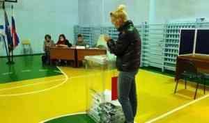 По итогам первого дня голосования Поморье заняло третье место по явке в СЗФО