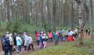 Пройти Рубцовской тропой: в Емецке на родине русского поэта открылся новый турмаршрут