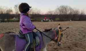 При поддержке гранта губернатора в столице Поморья для детей проводятся занятия в конном клубе