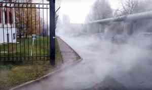 Погибла рыба и размыло берег: последствия водопада из кипятка в Архангельске