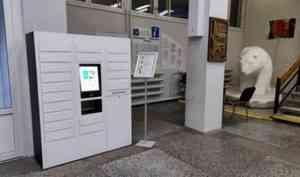 В Добролюбовке появился электронный библиотекарь: для общения с ним не нужен QR-код
