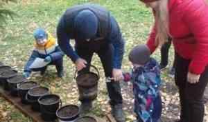Онежане создают «Семейную аллею» из редких деревьев