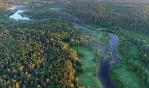 Сведения о границах Двинско-Пинежского заказника внесены в ЕГРН