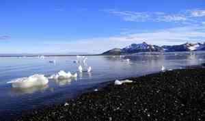 Правительство РФупростило получение статуса резидента Арктической зоны для малого бизнеса