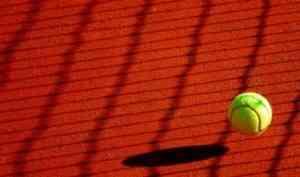 Архангельские теннисисты блестяще выступили на турнире в Санкт-Петербурге