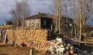 Больше 800 домов в Онежском районе остались без света из-за аварии на линиях электропередач