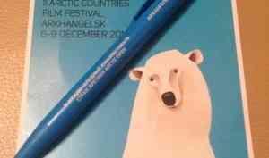 Кинофестиваль «Arctic open» в Северодвинске уже открыт