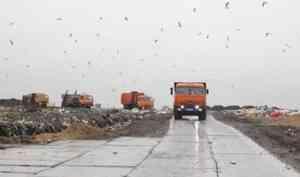 «Мусор под ёлочку». В Архангельск повезут отходы из Ненецкого округа
