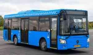 В Архангельске появится 30 новых общественных автобусов