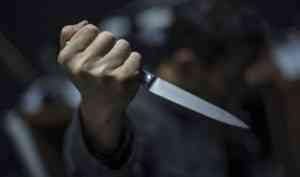 Двое жителей Шенкурского района отправятся в колонию за убийство инвалида и его знакомого