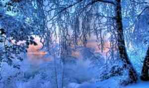 В Архангельскую область пришли морозы