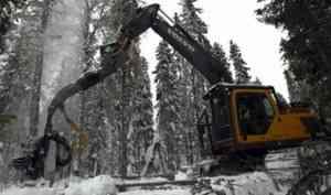 В 2018 году Группа компаний «Титан» заготовила 2,9 миллиона кубометров древесины
