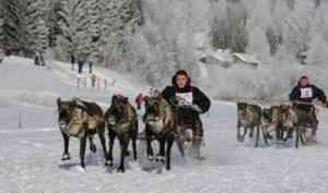 В поселке Голубино Пинежского района пройдет Праздник оленя