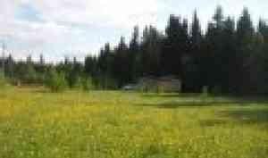 Об использовании дачных земельных участков коммерческими организациями или физлицами