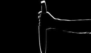 В Плесецком районе женщина убила бывшего в день святого Валентина