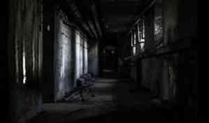 Жителя Плесецкого района осудят за похищение и вымогательство