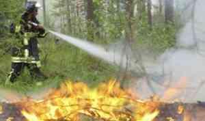 Приглашаем наобучение попрограмме повышения квалификации «Руководитель тушения лесных пожаров» с15 по18апреля 2019 года
