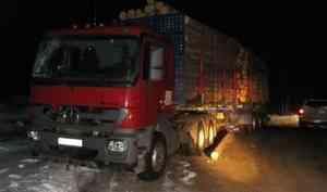В Плесецком районе при перевозке леса погиб рабочий