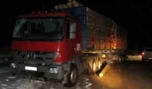 Следователи проверяют факт гибели рабочего при перевозке леса в Плесецком районе