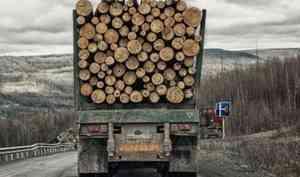 Несчастный случай: в Плесецком районе при перевозке леса погиб водитель