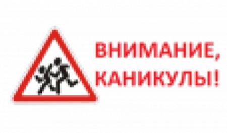В Северодвинске продолжается профилактическое мероприятие «Детям – безопасные каникулы!»