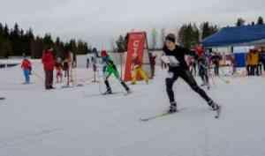 Команда САФУ поспортивному ориентированию приняла участие в«Беломорских Играх»