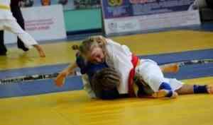 Право представлять Поморье на всероссийском финале по дзюдо завоевали восемь борцов региона