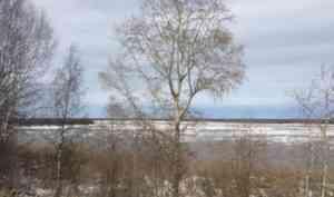 В Красноборске наблюдается средний ледоход