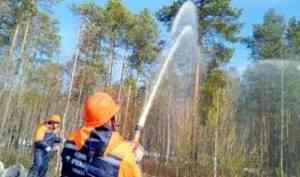 Минприроды Архангельской области – «пожар» потушен оперативно