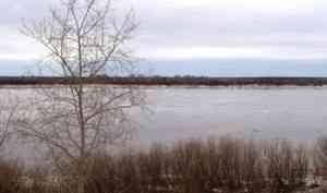 Обстановка с ледоходом в Архангельской области на утро 19 апреля