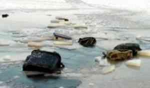 Четверо рыбаков утонули в Каргопольском районе