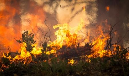 В Архангельской области начинается пожароопасный сезон
