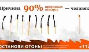 С 6 мая в лесах Архангельской области вводится пожароопасный сезон