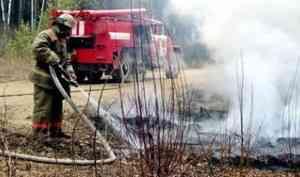 Пожароопасный сезон вводится в лесах Архангельской области с 6 мая